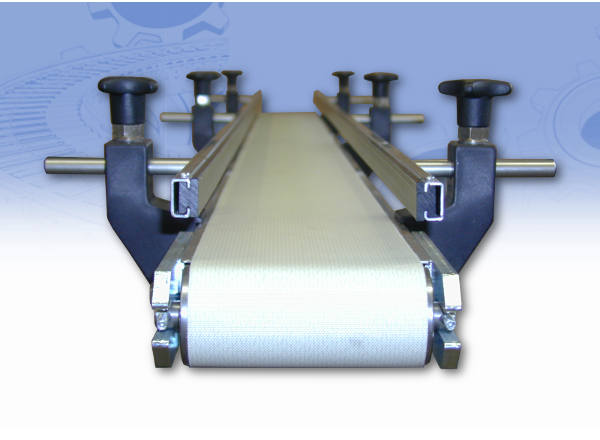 Belt Conveyor with lateral guides